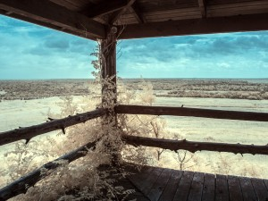 Buffalo Hill Lookout IR